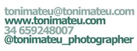 Toni Mateu